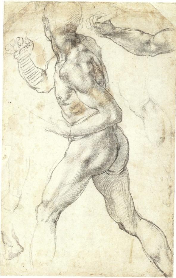 Michelangelo_A-Male-Nude, c.1504-1505, Teylers Museum, Netherlands.jpg